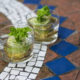 How to Regrow Your Own Vegetables